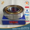 Rolamento de rolo cilíndrico do rolamento Rn313 Rn313m Rn313e Rn313em da qualidade