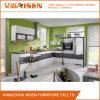 Wohnungs-Küche-Entwurfs-Lack-Küche-Schrank