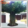 Árvore viva artificial falsificada decorativa do Ficus da fonte de China