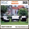 Wicker установленная софа/софа отдыха/мебель патио (SC-B1004)
