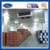 Refrigeration Cold Room for Fruits and Vegetables