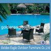 Mobilia del giardino della mobilia che pranza insieme