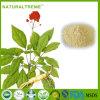 Extrato vermelho original botânico do Ginseng de Coreia para a saúde