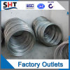 Draad van uitstekende kwaliteit 401 van het Roestvrij staal