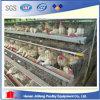 Клетка цыпленка слоя сделала провод сетки для птицефермы