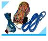 Fabricante feito sob encomenda do chicote de fios do fio do motor do carro de bateria