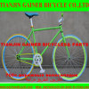 Tianjin Gainer 700c Road Bicycle Equipped com Fixed Gear