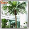 Palme decorative esterne false artificiali di qualità di Heigh (CO-010)