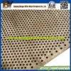 Perforated galvanizzato Metal Mesh per Industry in mare aperto