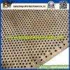 Гальванизированное Perforated Metal Mesh для оффшорного Industry
