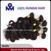 Человеческие волосы объемной волны Weft бразильские