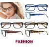 De in het groot Glazen van het Frame Eyewear van het Frame van Glazen Nieuwe Model
