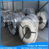 De koudgewalste Rol van het Roestvrij staal (Se-802)