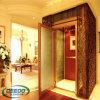 Petit mini ascenseur en verre résidentiel de construction de luxe de maison de Chambre de passager