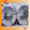 La bobine en acier galvanisée/Chaud-A plongé l'acier galvanisé Coil/Gi