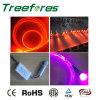 Fibre solide de lueur de côté de faisceau avec la source d'éclairage LED