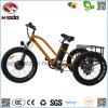 Наиболее поздно велосипед 3 колес электрический для трицикла пляжа автошины Passanger тучного