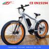 Bicicleta Eléctrica de Fujiang, Bicicleta Eléctrica Motor MID, Motor Eléctrico