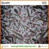 Luxuriöser Meteorus Granit für Innenwand und Fußboden-Fliese