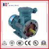 380V 50Hz de Explosiebestendige Elektrische Motor van de Inductie 3phase