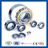 Einzelne Reihen-volle Ergänzungs-zylinderförmige Selbstrollenlager SL181864