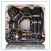 CE поставщика консигнанта Wholescale, SAA одобрил горячий ушат (S520)