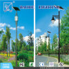 カスタマイズされたModule 50/100W Solar LED Street Light (BDTYN50)