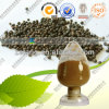 Extracto natural Piperine de la pimienta negra