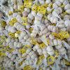 L'aglio fresco ha imballato in 3p con il sacchetto della maglia 10kg