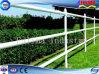 Galvanizzato/ha verniciato la rete fissa d'acciaio fatta del tubo (SF-004)