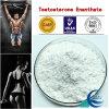 Hoher Reinheitsgrad-Testosteron Enanthate/Steroid-Puder der Prüfungs-E mit Gebäude-Muskel-Lieferanten