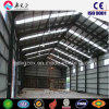 Almacén de la estructura de acero, almacenaje (SSW-191)