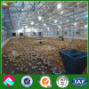 정연한 Tube Frame Agricultural Farm Buildings 또는 Barn Kits