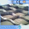 Plastic Geocell voor de Bescherming van de Helling