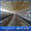 Qualität und Low Price Chicken Transport Cage