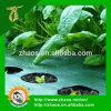 Gemüsegarten umfaßt schwarzer Plastikgrundabdeckung-Garten-Grundabdeckung