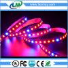 2835 LED coltivano l'indicatore luminoso di striscia per le piante
