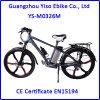 山の3つの速度の内部ギヤと電気電気バイクかモーターバイクまたはバイク