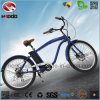 合金フレームの人様式のバイク電気浜の自転車