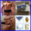Bodybuilding de la hormona del péptido del polvo del crecimiento del ser humano del análisis 99.9%