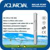 Bombas solares da C.C. |Ímã permanente|C.C. sem escova|O motor é enchido com água|Poço solar Pumps-4sp5/4 (ST)