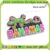 Gecko à la maison personnalisé des Bahamas de souvenir d'aimants de réfrigérateur de silicones de décoration (RC- BS)