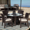 Tuin Round Dining Set Outdoor Furniture (RDS-109)