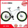 カーボンFatbikeの完全な脂肪質のバイクの熱い販売