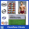 99% 순수성 50-41-9 스테로이드 Clomifene 구연산염 Clomid