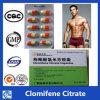 반대로 에스트로겐 50-41-9 경구 스테로이드 환약 Clomifene 구연산염 Clomid