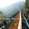 Belt orizzontale Conveyor/Sand Gravel Conveyor per Sands Handling