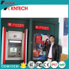 송수화기 은행 전화를 가진 Knzd-27 VoIP 전화 또는 아날로그 진짜 전화