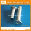 Tornillos de socket principales planos de calidad superior del moho anti A4 M18~M100