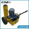 Serie de precio de fábrica Pow′ Elevación de gato hydráulico de la canalización vertical de R (FY-RJI)
